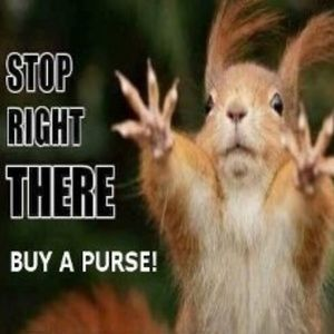 Buy A Purse Today